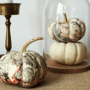 Toss The Knife! No Carve Pumpkin Ideas! | The Party Goddess!